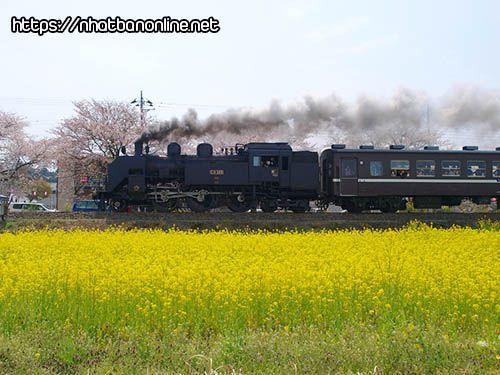 Đường sắt Mooka - tỉnh Tochigi Japan
