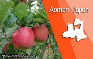 Tỉnh Aomori Japan