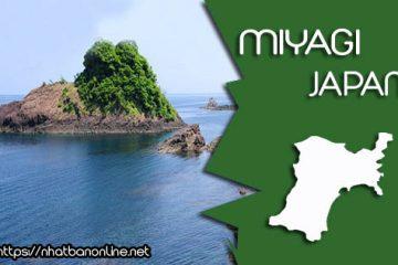 Tỉnh Miyagi Japan – nơi có những điểm đến đẹp nhất Nhật Bản