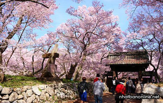 Công viên di tích thành Takato - tỉnh Nagano Japan