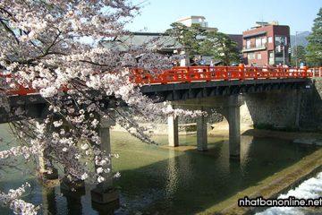 Tỉnh Gifu Japan – vùng đất giàu truyền thống