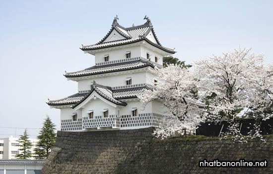 Tỉnh Niigata Japan