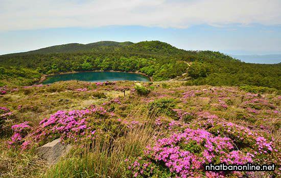 Cao nguyên Ebino - tỉnh Miyazaki Nhật Bản