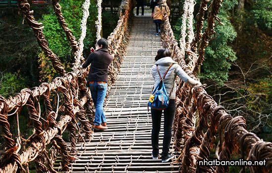Cầu Kazura - tỉnh Tokushima Nhật Bản