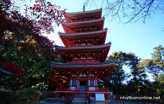 Chùa Chikurin-ji - tỉnh Kochi Japan