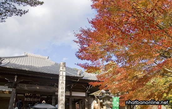 Chùa Jakko - tỉnh Aichi Japan