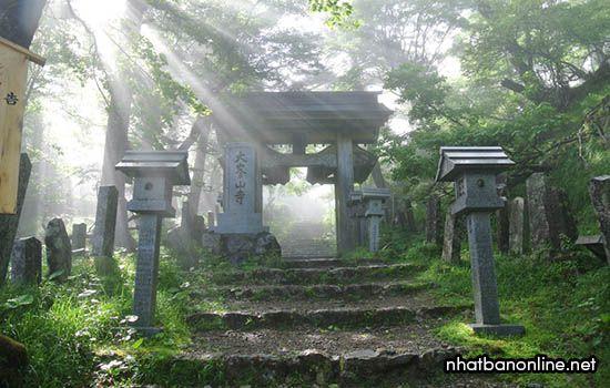 Chùa Ominesan - ngôi chùa cấm nữ giới ở tỉnh Nara Japan