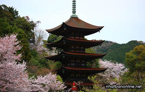 Chùa Ruriko-ji - tỉnh Yamaguchi Japan
