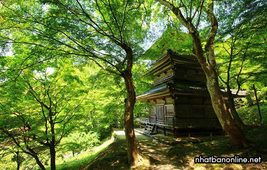 Chùa Kogen-ji - tỉnh Hyogo Japan