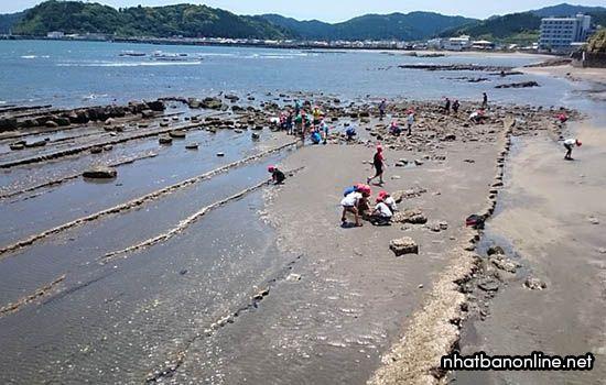 Đảo Aoshima - tỉnh Miyazaki Nhật Bản