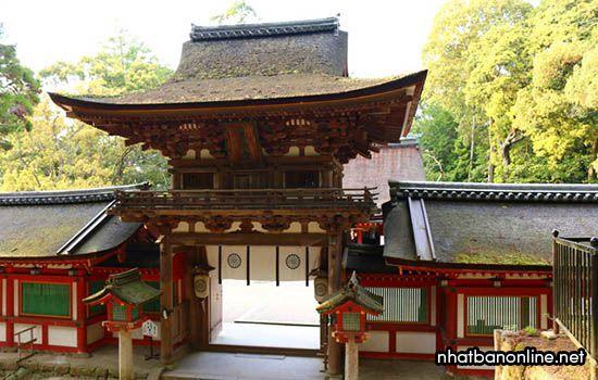 Đền Isonokami-jingu - tỉnh Nara Japan