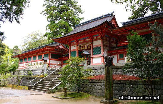 Đền Kasii-gu - tỉnh Fukuoka Japan