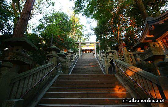 Đền Kotohira-gu - tỉnh Kagawa Japan