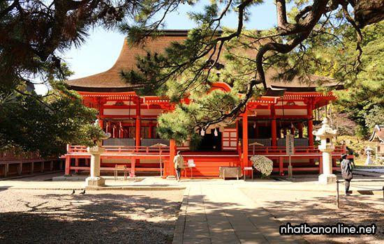 Đền thờ Hinomisaki - tỉnh Shimane Japan