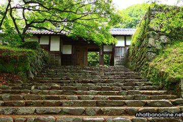 Tỉnh Fukuoka Japan – điểm đến của nhiều du học sinh Việt