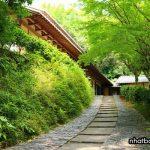 Lò gốm Ryuta Gama - tỉnh Saga Japan