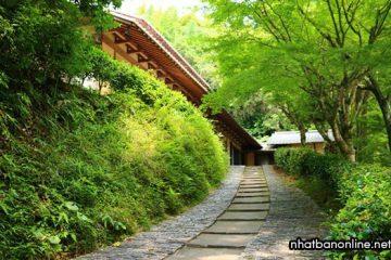 Tỉnh Saga Japan – lò gốm và những onsen tuyệt vời