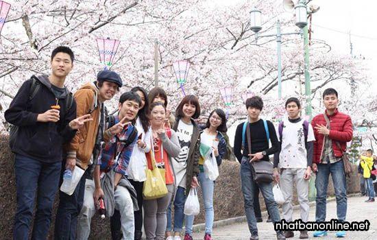 Du học sinh và thực tập sinh Nhật Bản