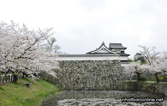 Thành Fukuoka - tỉnh Fukuoka Japan