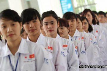Thực tập sinh Nhật Bản là gì? TTS khác gì với tu nghiệp sinh