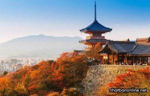Tỉnh Kyoto Japan