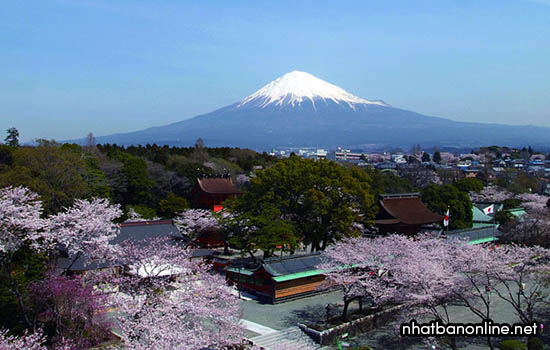 Tỉnh Shizuoka Japan