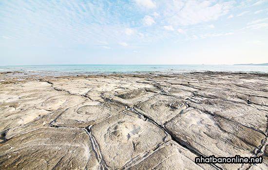 Vỉa đá Tatamiishi - tỉnh Okinawa Japan
