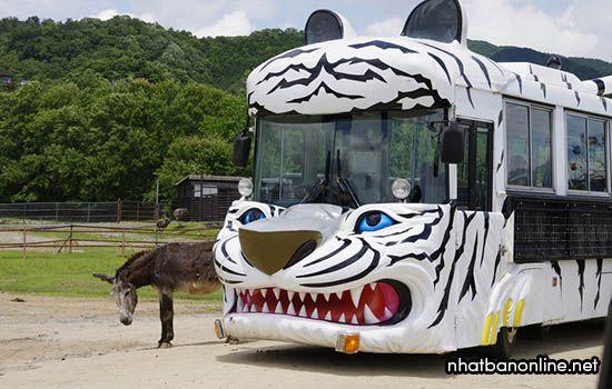 Vườn thú hoang dã Akiyoshidai Safari Land - tỉnh Yamaguchi Japan