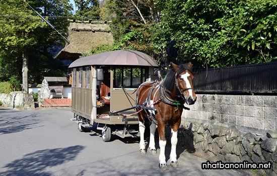 Xe ngựa tham quan Yufuin - tỉnh Oita Japan