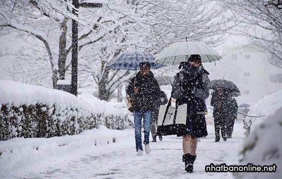 Khí hậu của Nhật Bản rất lạnh vào mùa đông