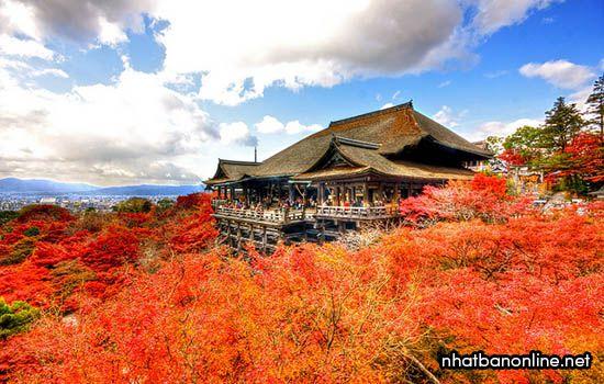 Khí hậu của Nhật Bản vào mùa thu