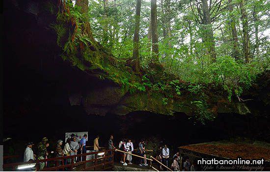 Lối vào hang băng Narusawa trong rừng tự sát Aokigahara