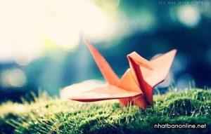 Cách gấp hạc giấy Origami