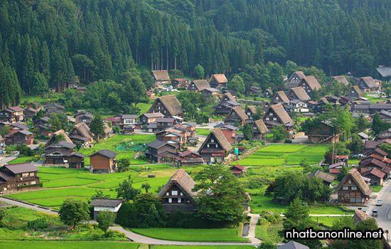 Làng cổ Shirakawago