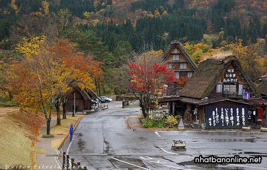 Làng cổ Shirakawago vào mùa thu