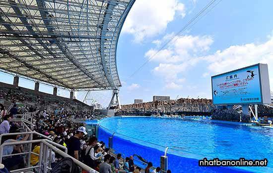 Thủy cung cảng Nagoya