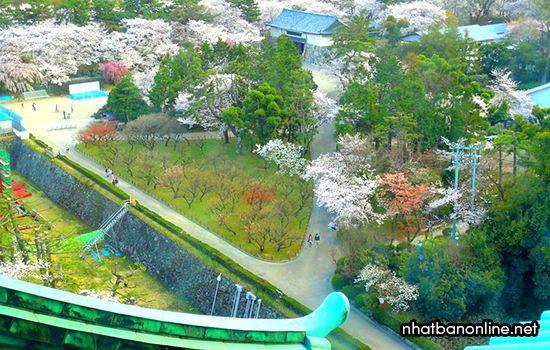 Toàn cảnh thành cổ Nagoya