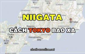 Niigata cách Tokyo bao xa? Từ Tokyo đến Niigata bao nhiêu km