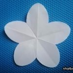 Cách cắt hoa 5 cánh