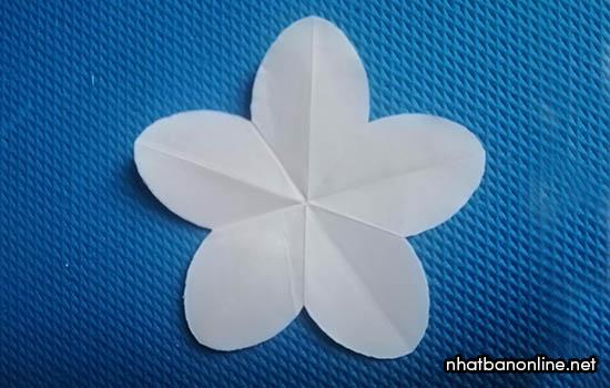 Hoa 5 cánh bằng giấy