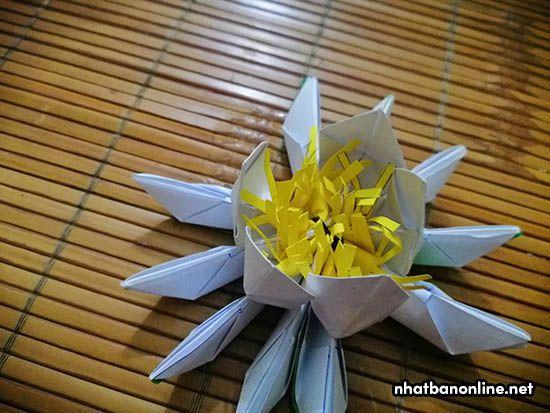 Do cách 1 cánh hoa lại kéo một cánh hoa lên nên có 10 cánh hoa nhưng chúng ta chỉ kéo được 5 cánh lên như hình mà thôi. Giờ tiếp tục kéo 5 cánh mà nãy chúng ta bỏ cách lên.