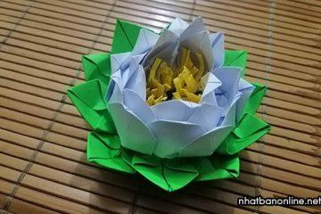 Cách xếp hoa sen bằng giấy đẹp kiểu mới, dễ làm
