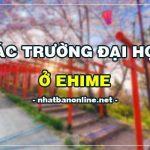 Các trường đại học ở Ehime Nhật Bản (update 4/2020)