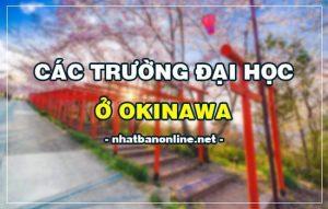Các trường đại học ở Okinawa Nhật Bản (update 4/2020)