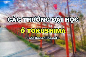 Các trường đại học ở Tokushima Nhật Bản (update 4/2020)