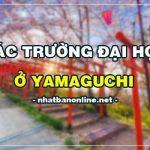 Các trường đại học ở Yamaguchi Nhật Bản (update 4/2020)