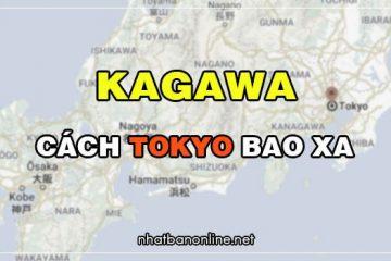 Kagawa cách Tokyo bao xa? Từ Tokyo đến Kagawa bao nhiêu km