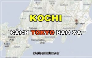 Kochi cách Tokyo bao xa? Từ Tokyo đến Kochi bao nhiêu km