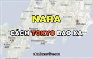 Nara cách Tokyo bao xa? Từ Tokyo đến Nara bao nhiêu km