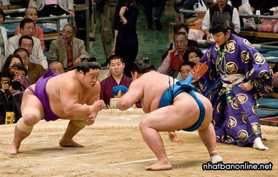 12 điều ít biết về sumo Nhật Bản